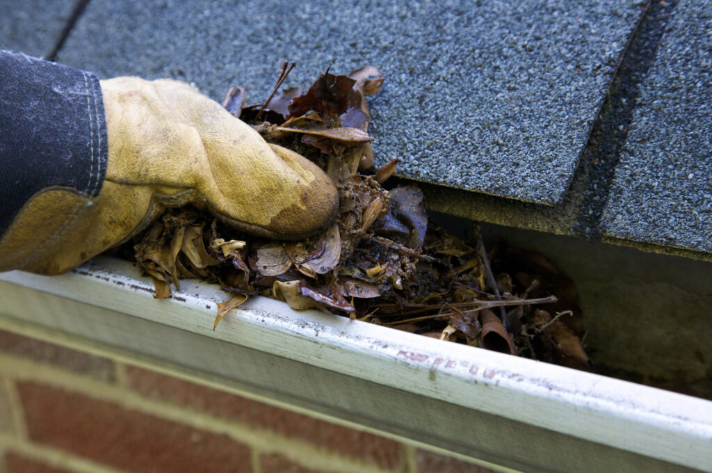 Gloved hand removing leaves from gutter